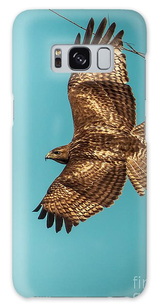 Hawk In Flight Galaxy Case by Robert Frederick