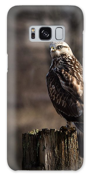 Hawk On A Post Galaxy Case