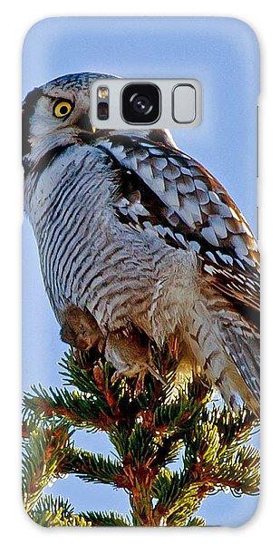 Hawk Owl Square Galaxy Case