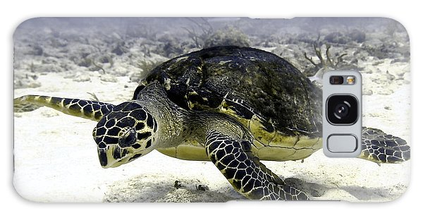 Hawksbill Caribbean Sea Turtle Galaxy Case