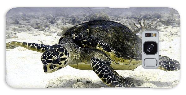 Hawksbill Caribbean Sea Turtle Galaxy Case by Amy McDaniel