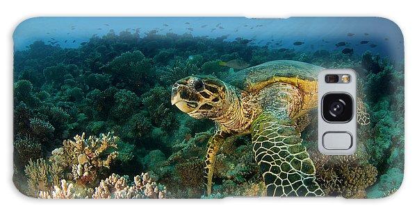 Turtle Galaxy Case - Hawksbill Sea Turtle by Ilan Ben Tov