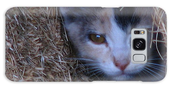 Haystack Cat Galaxy Case