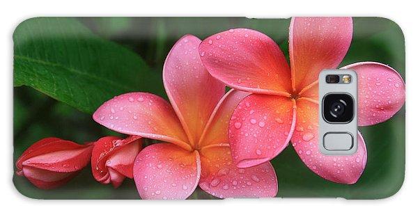 He Pua Laha Ole Hau Oli Hau Oli Oli Pua Melia Hae Maui Hawaii Tropical Plumeria Galaxy Case