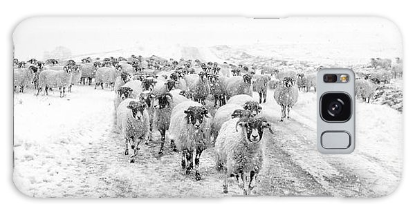 Sheep Galaxy Case - Heading For Home by Janet Burdon