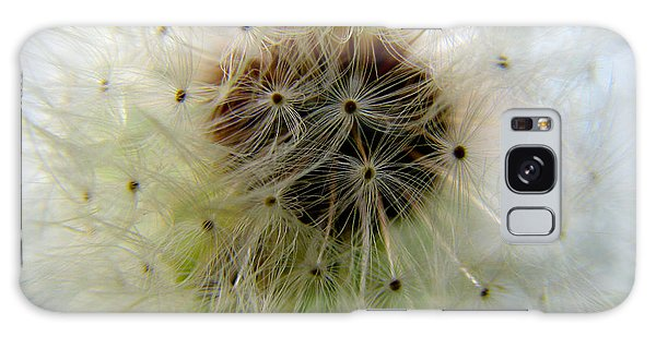 Heart Of The Dandilion Galaxy Case