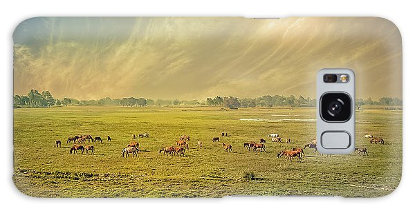 Heat N Dust - Indian Countryside Galaxy Case