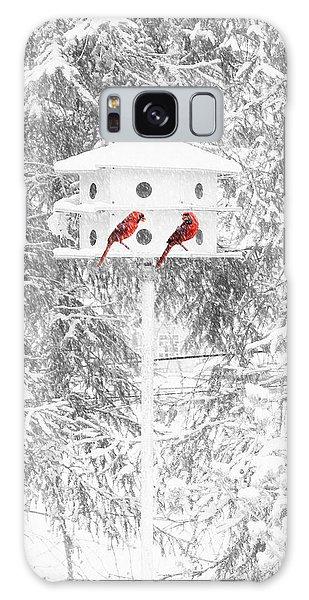 Snowbirds Galaxy Case