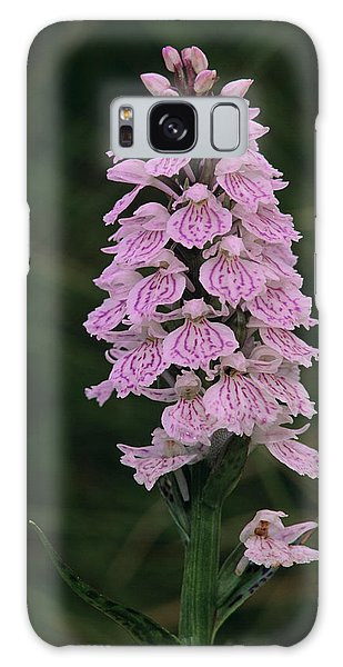 Cairngorms National Park Galaxy Case - Heath Spotted Orchid Flowers by Duncan Shaw/science Photo Library