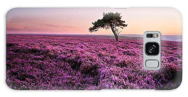 Tree Galaxy Case - Heather At Sunset by Janet Burdon
