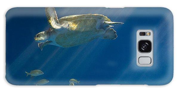 Heavenly Turtle Galaxy Case