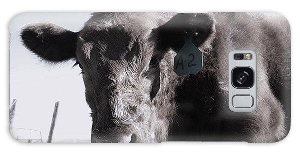 Heifer Galaxy Case
