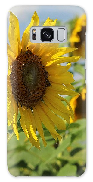 Conyers Galaxy Case - Helianthus 5 by Cathy Lindsey