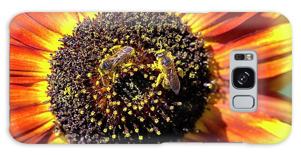 Helianthus Annuus Galaxy Case - Helianthus Annuus 'solar Eclipse' by Brian Gadsby/science Photo Library
