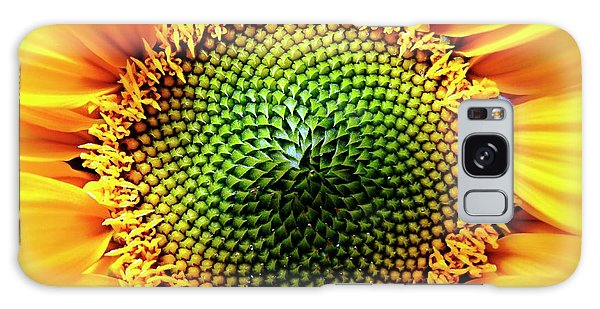 Helianthus Annuus Galaxy Case - Helianthus Sunflower by Ian Gowland/science Photo Library