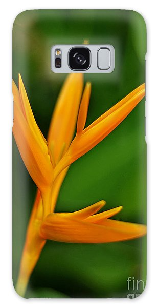 Heliconia Photo Galaxy Case