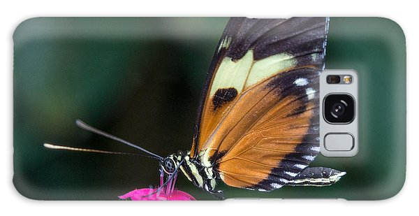 Heliconius Ismenius Galaxy Case
