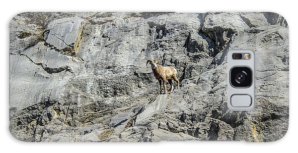 Big Horn Sheep Coming Down The Mountain  Galaxy Case