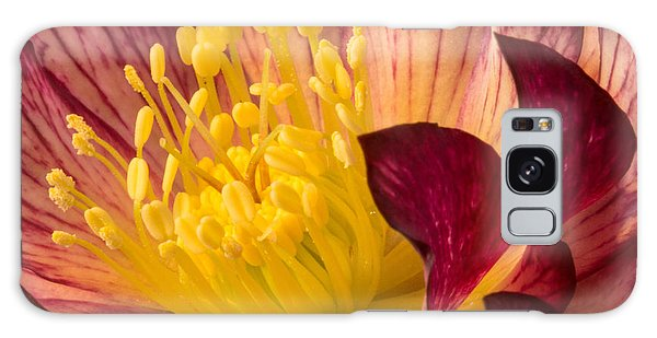 Hellebore Ruby Yellow Glow Galaxy Case
