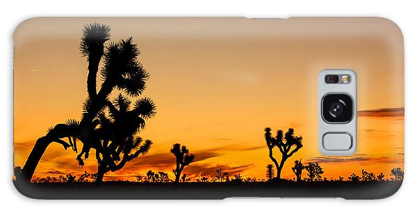 Hello Joshua Tree Galaxy Case