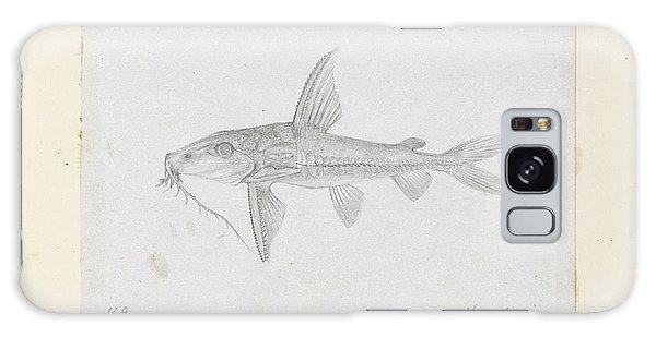 Catfish Galaxy S8 Case - Hemidoras Stenopeltis by Natural History Museum, London
