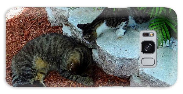 Hemingway Cats Galaxy Case
