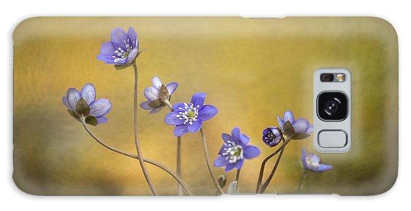 Flora Galaxy Case - Hepatica Nobilis Flower by Piet Haaksma