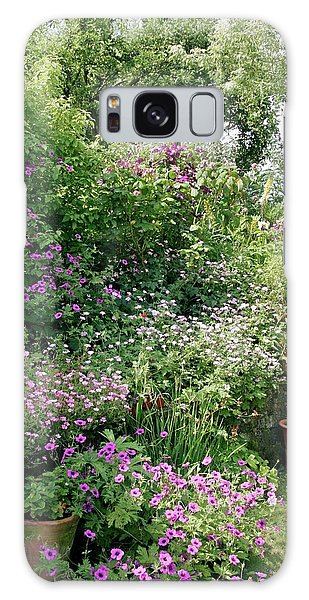 Flowerbed Galaxy Case - Herbaceous Border In July by Stephen Harley-sloman/science Photo Library