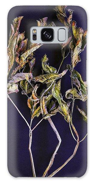 Herbarium 1 Galaxy Case by Vladimir Kholostykh