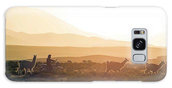 Llama Galaxy S8 Case - Herd Of Llamas Lama Glama In A Desert by Panoramic Images