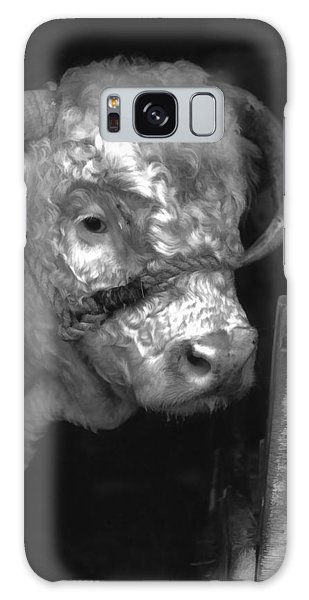 Hereford Bull In Black And White Galaxy Case by Cathy Anderson