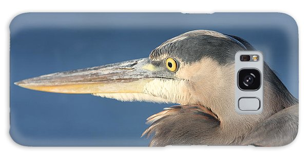 Heron Close-up Galaxy Case by Christiane Schulze Art And Photography