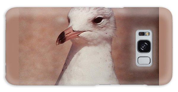 Beach Gull On The Hunt Galaxy Case by Belinda Lee