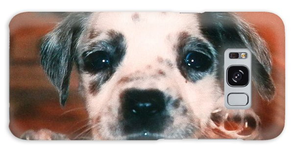 Dalmatian Sweetpuppy Galaxy Case by Belinda Lee