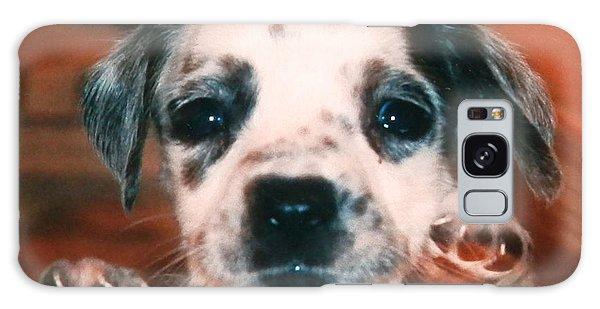Dalmatian Sweetpuppy Galaxy Case by Belinda Lee