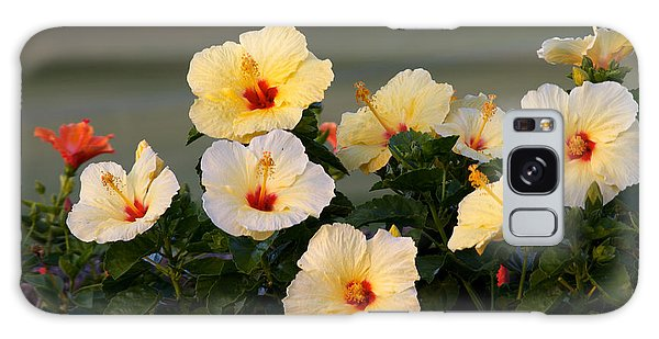 Hibiscus Convention All Profits Go To Hospice Of The Calumet Area Galaxy Case