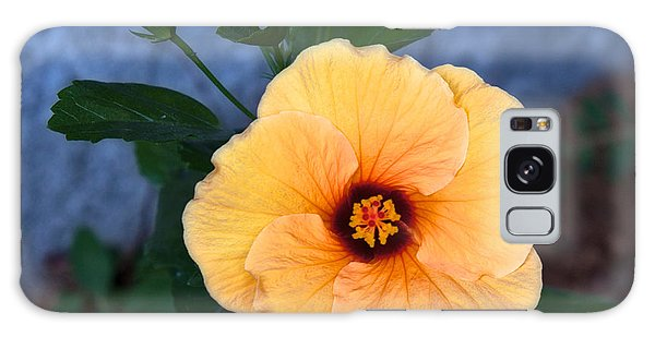 Hibiscus In Fading Light Galaxy Case