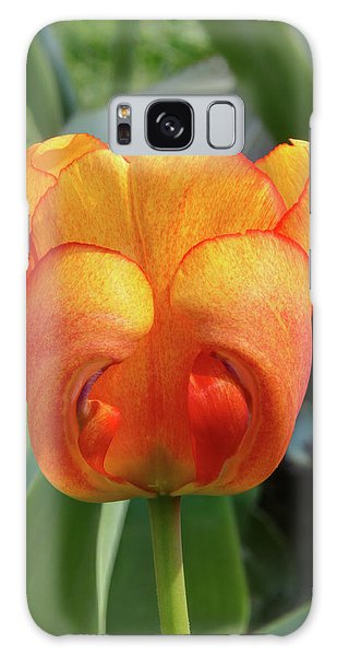 Hide-n-seek Tulip Galaxy Case