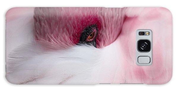Hiding Flamingo Galaxy Case