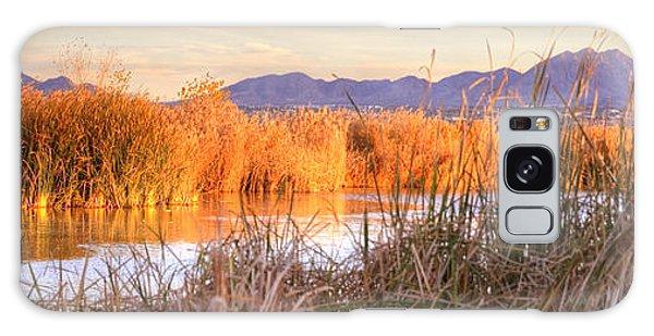 High Desert Wetlands Galaxy Case
