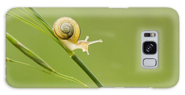 High Speed Snail Galaxy Case