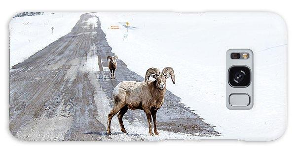 On The Road Again Big Horn Sheep  Galaxy Case