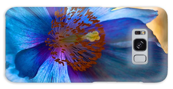 Himalayan Blue Poppy IIi Galaxy Case