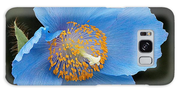 Himalayan Gift -- Meconopsis Poppy Galaxy Case by Byron Varvarigos