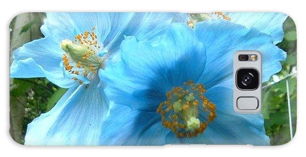 Himalayan Poppy Galaxy Case
