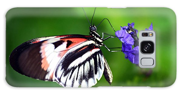 Hint Of Red Butterfly Galaxy Case