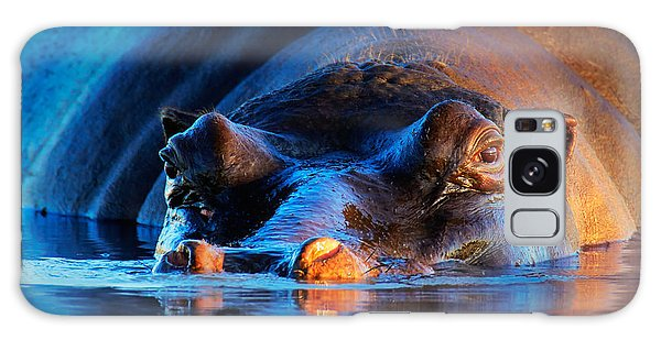 Hippopotamus  At Sunset Galaxy Case
