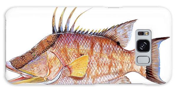 Mangrove Snapper Galaxy Case - Hog Fish by Carey Chen