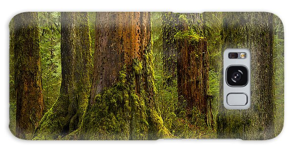 Hoh Rainforest 1 Galaxy Case