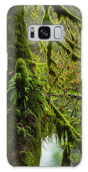 Hoh Rainforest 2 Galaxy Case by Joe Doherty